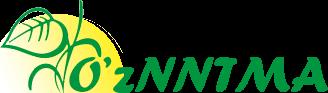 National Association of Non-Governmental Noncommercial Organizations of Uzbekistan (NGNPO Uz)