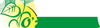 Национальная ассоциация негосударственных некоммерческих организаций Узбекистана